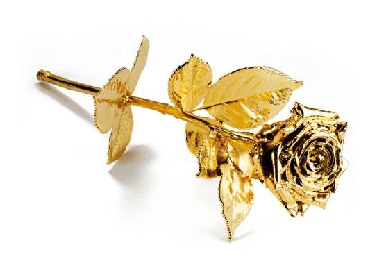 vergoldete Rose Degusa